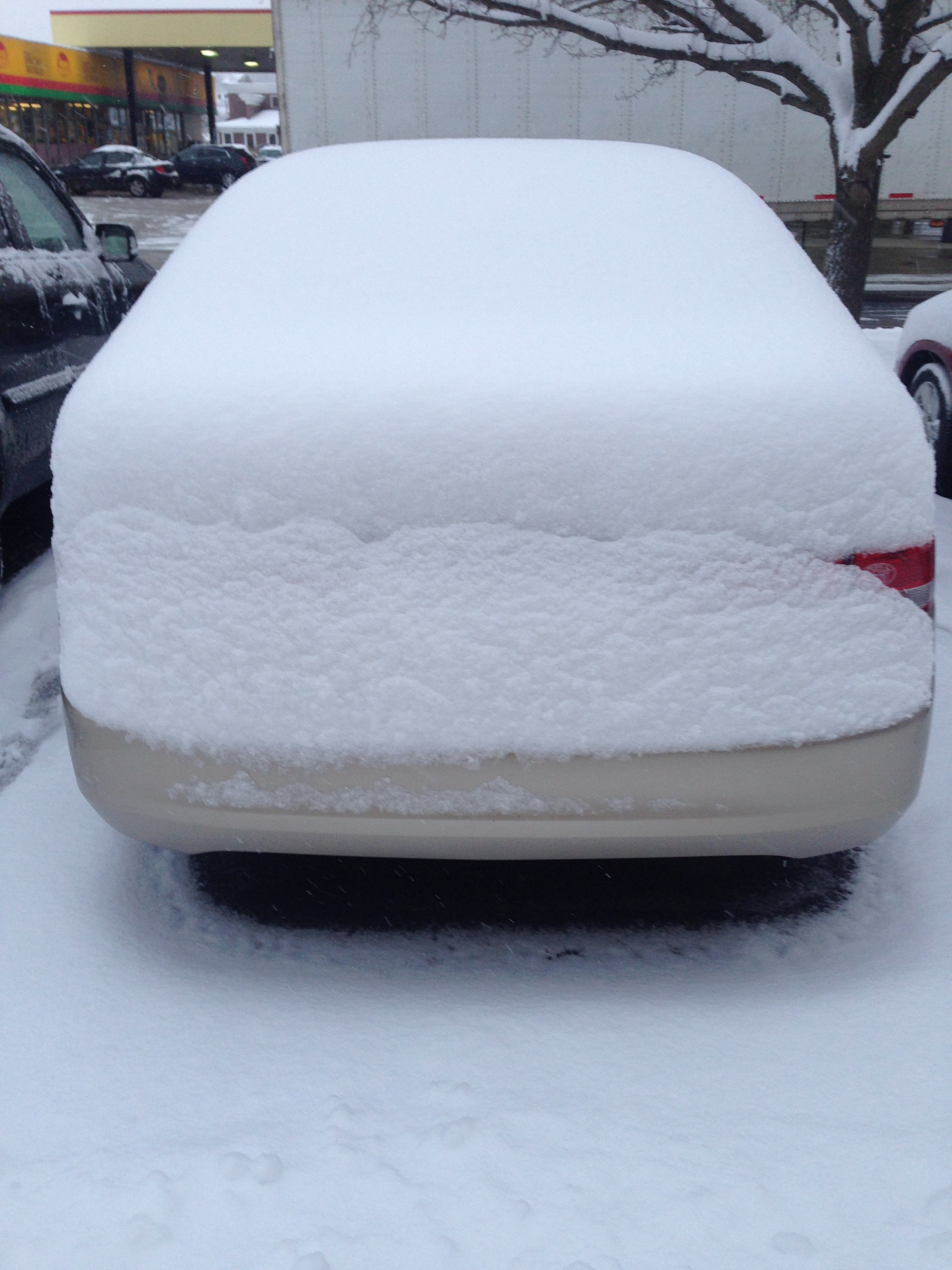 My car this morning. Cajuns cannot handle this.